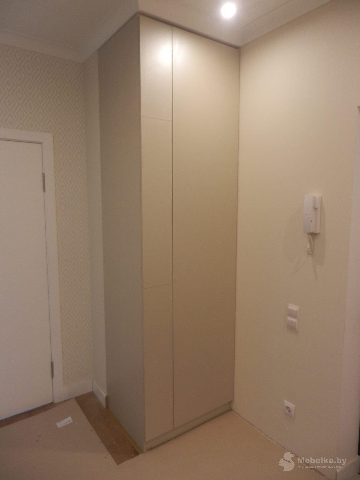 Одностворчатый шкаф в прихожей вид 1