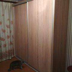 Шкаф-купе и кот вид 1