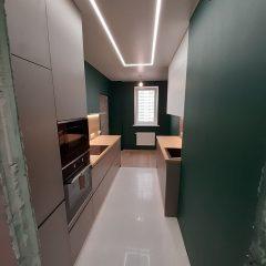 Кухня с зелеными стенами (10)